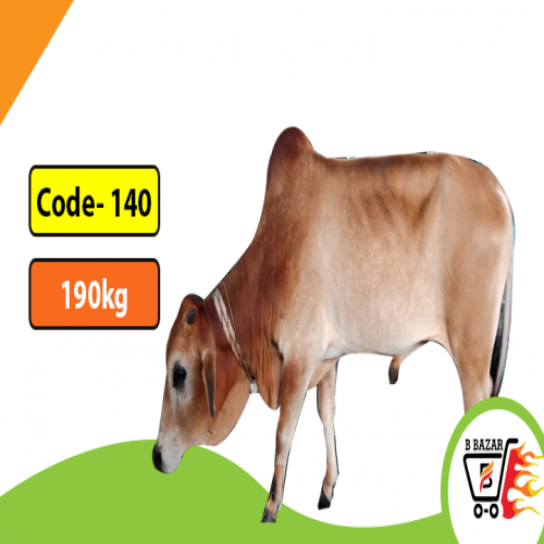 Red cow 190kg-425tk