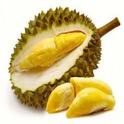 Malaysian Durian Fruit