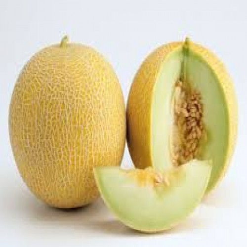 shamam fruit in Malaysia