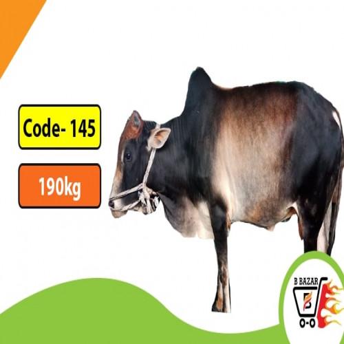 Organic Black cow 190kg-395tk